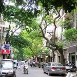 Hút bể phốt tại xã Hán Quảng